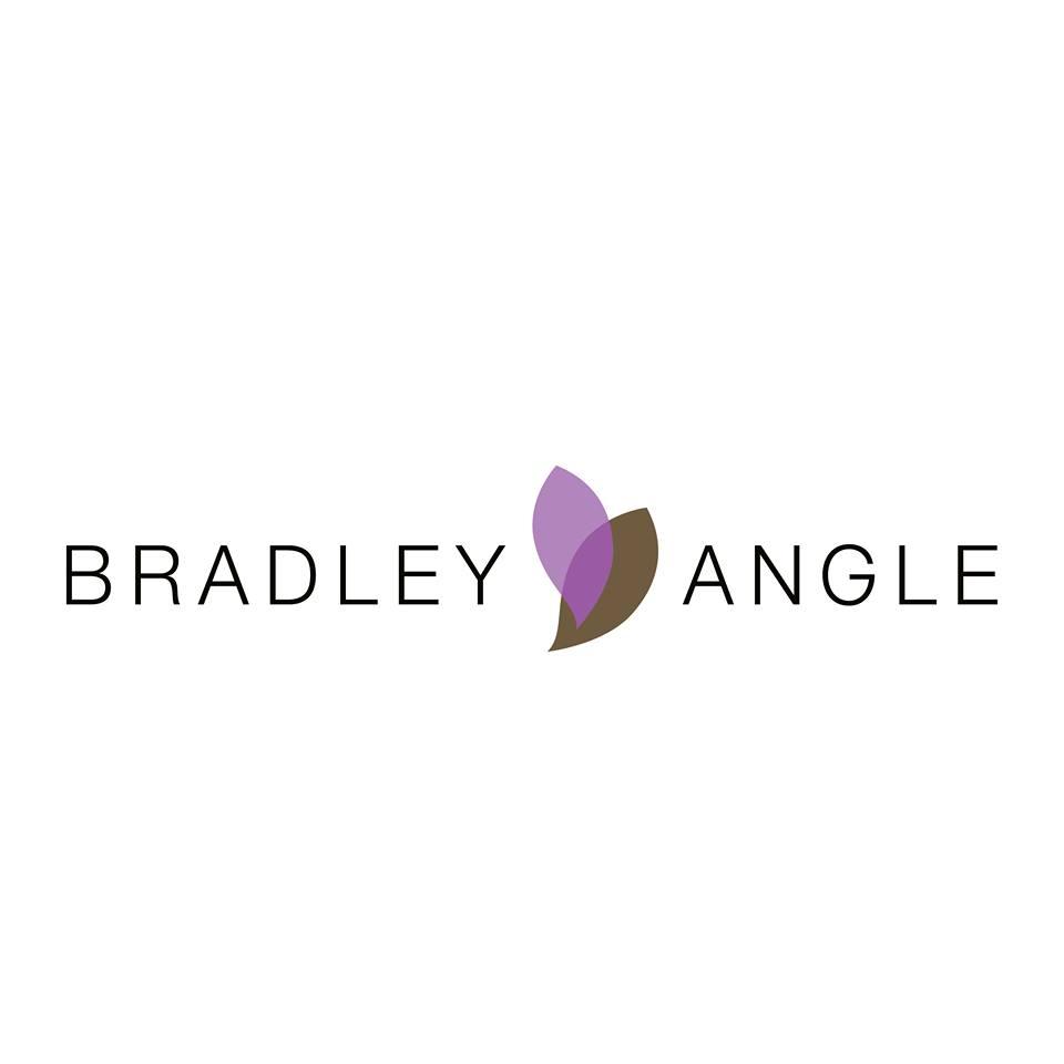 Bradley Angle House